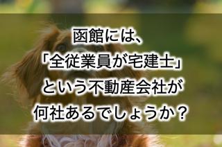 函館には「全従業員が宅建士」という不動産会社が何社あるでしょうか?